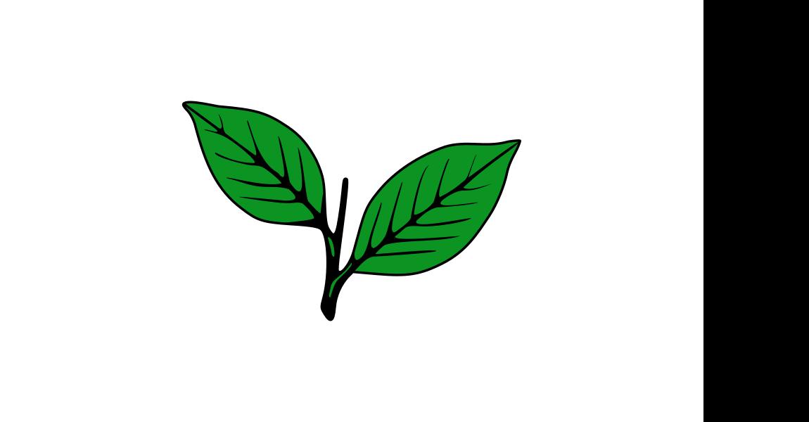 All India Anna Dravida Munnetra Kazhagam flag image preview