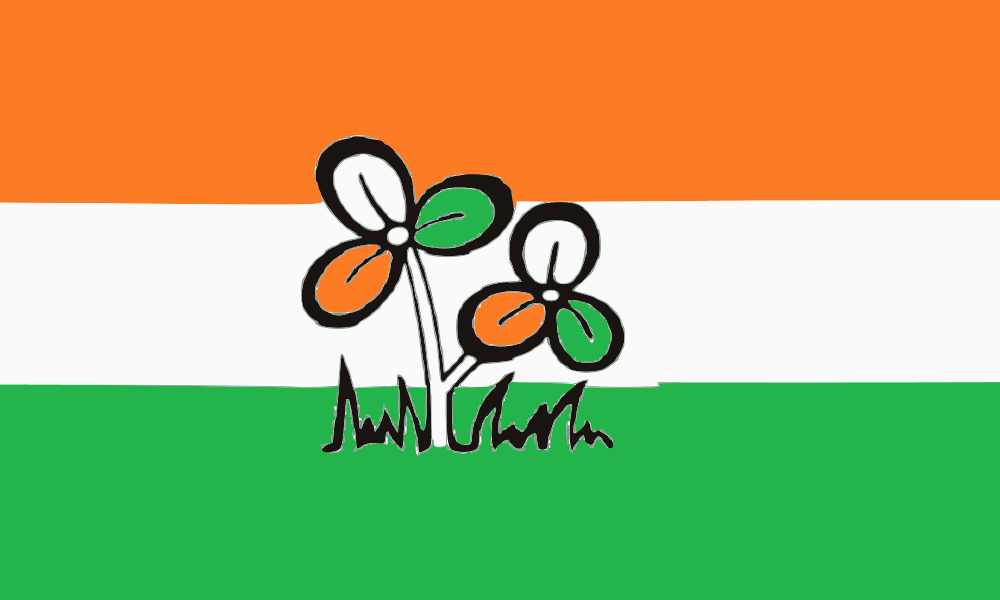 All India Trinamool Congress flag image preview