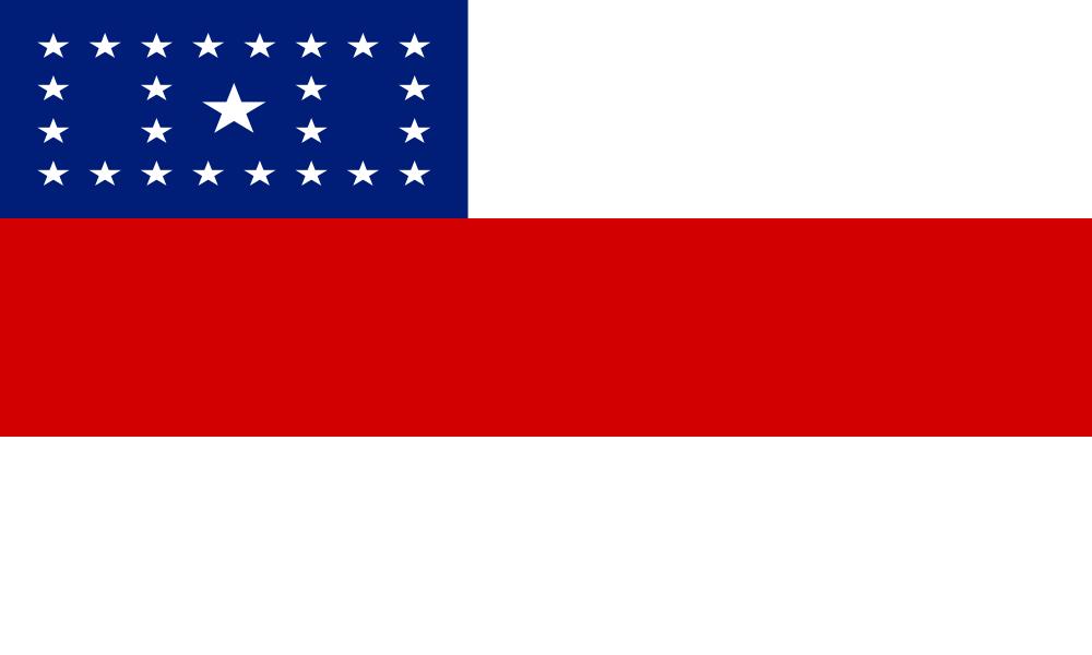 Amazonas flag image preview
