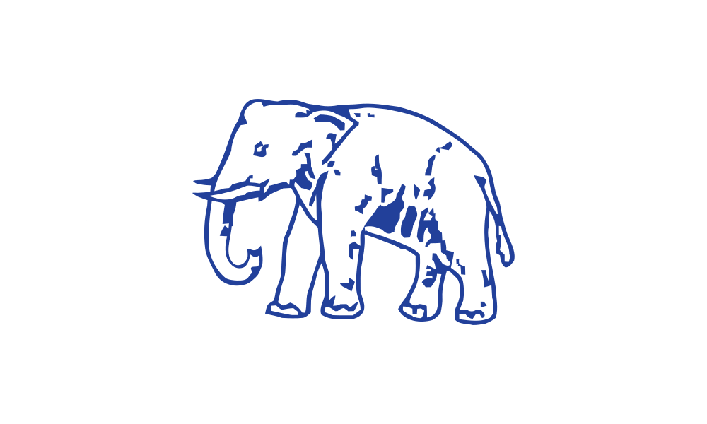 Bahujan Samaj Party flag image preview