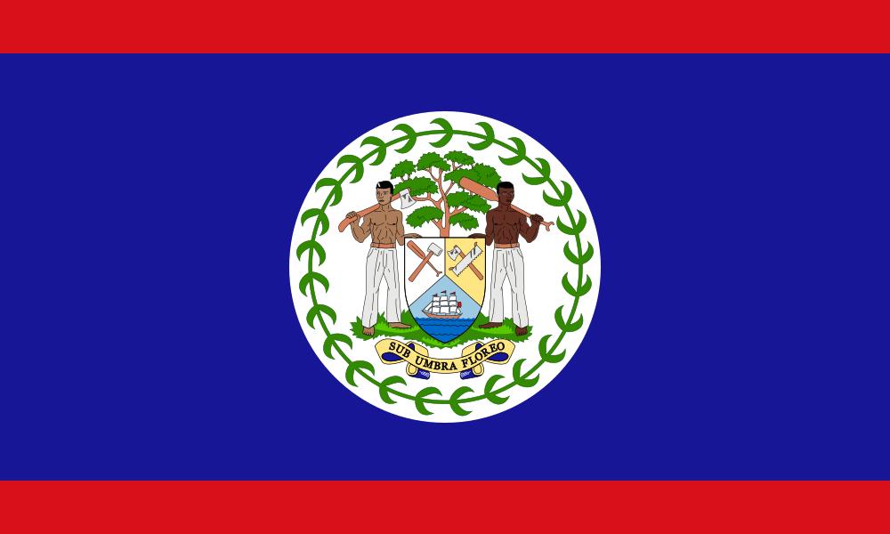 Belize flag image preview
