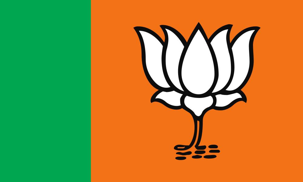 Bharatiya Janata Party flag image preview