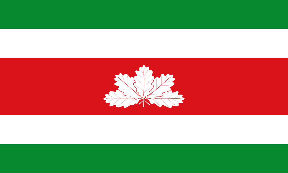 Boyacá flag image preview