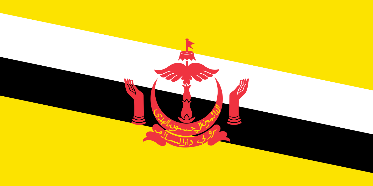 Brunei Darussalam flag image preview