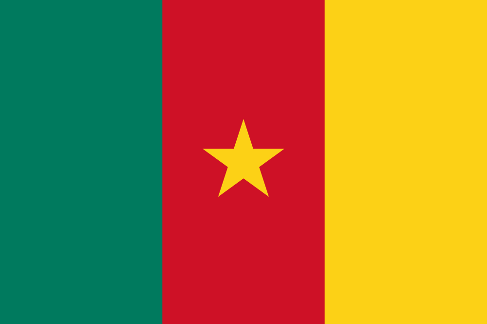 Cameroon flag image preview