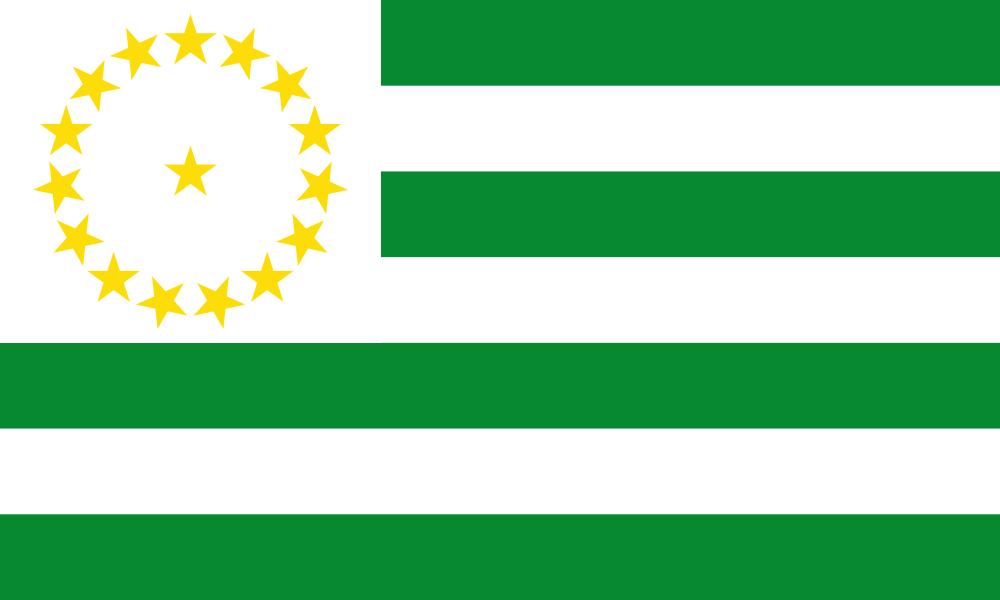 Caquetá flag image preview