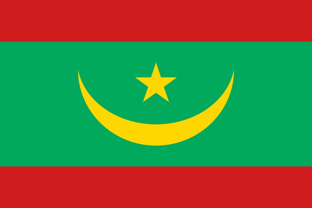 Mauritania flag image preview