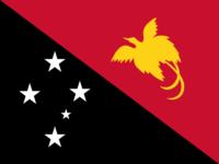 Madagascar flag image preview