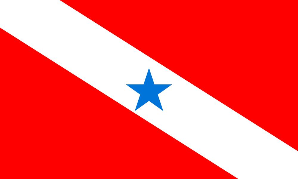 Pará flag image preview