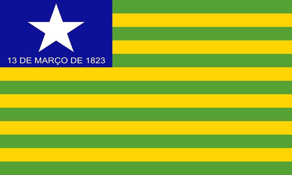 Piauí flag image preview