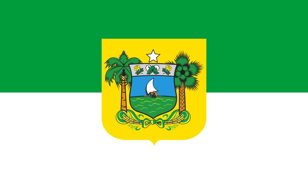 Rio Grande do Norte flag image preview