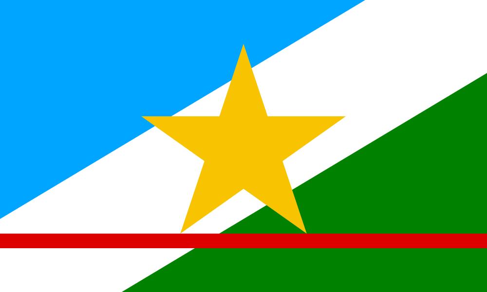 Roraima flag image preview