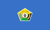 Pernambuco flag image preview