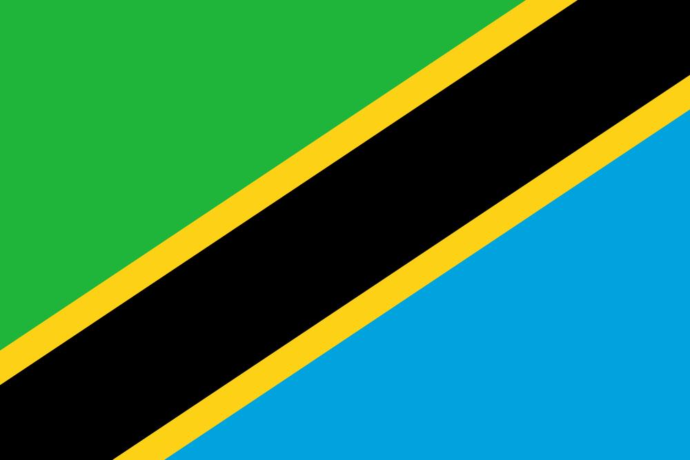 Tanzania flag image preview