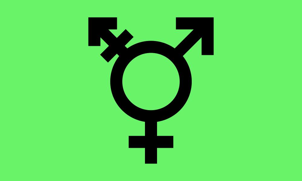 Israeli Transgender flag image preview