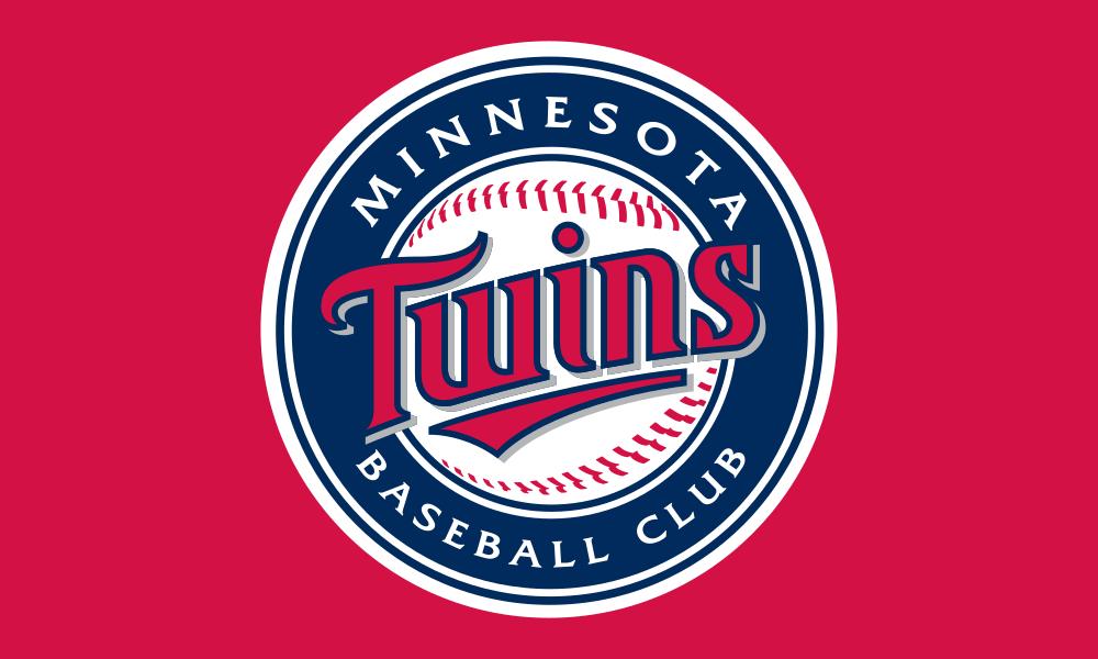 Minnesota Twins flag image preview