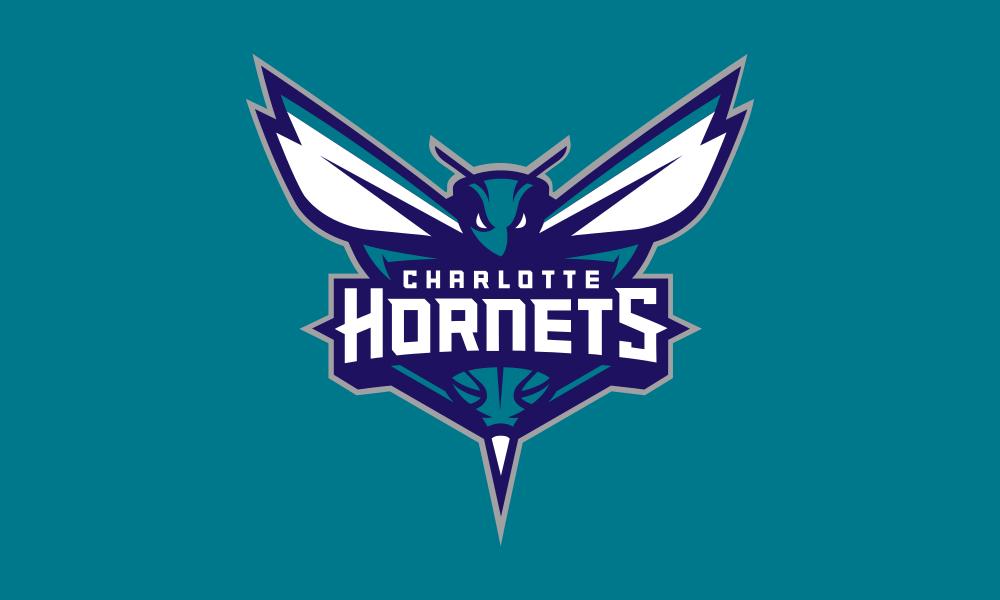 Charlotte Hornets flag image preview
