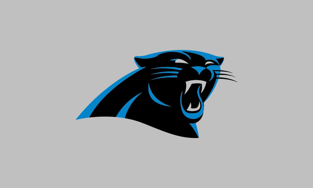Carolina Panthers flag image preview