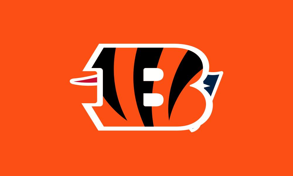 Cincinnati Bengals flag image preview