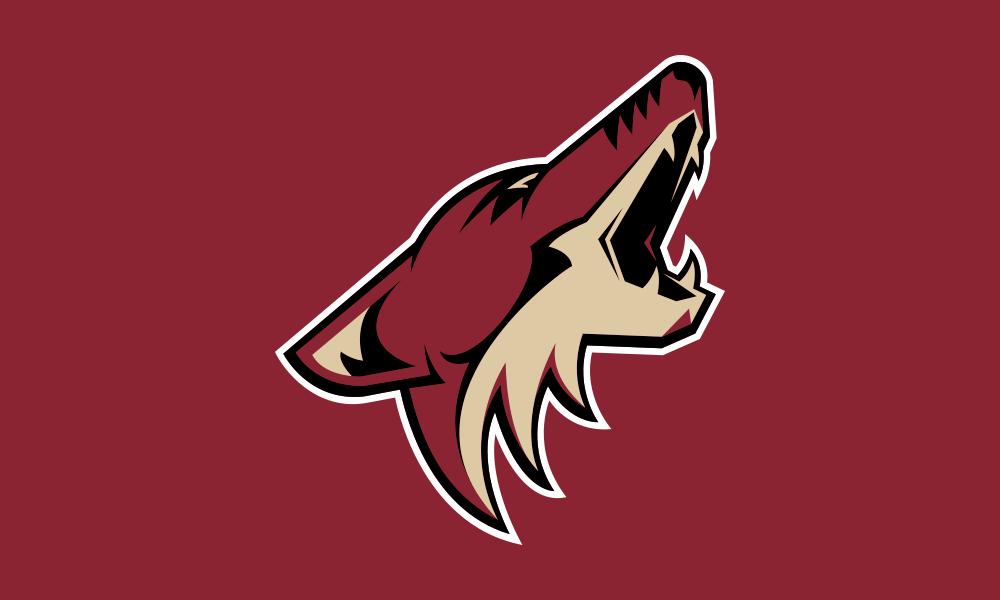 Arizona Coyotes flag image preview