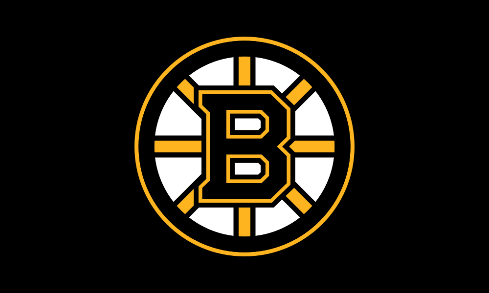 Boston Bruins flag image preview