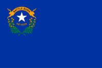 Delaware flag image preview
