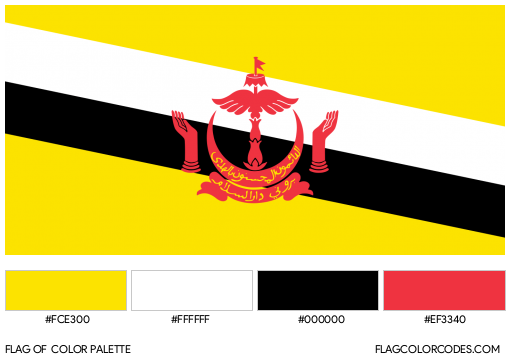 Brunei Darussalam Flag Color Palette