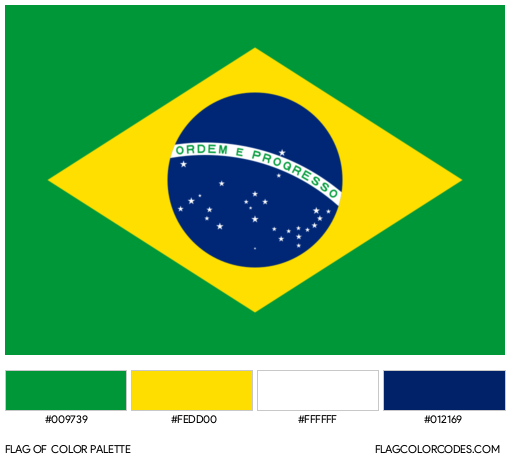 Brazil Flag Color Palette