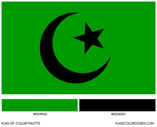 Fatimid Caliphate Flag Color Palette