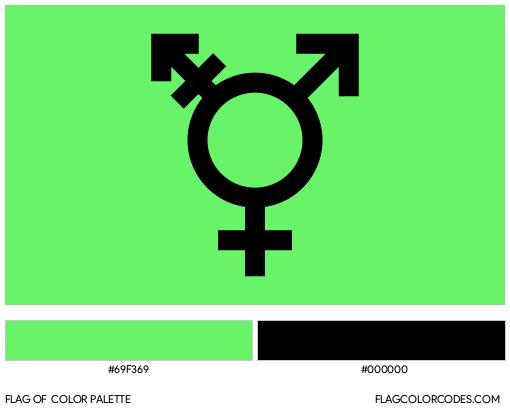 Israeli Transgender Flag Color Palette