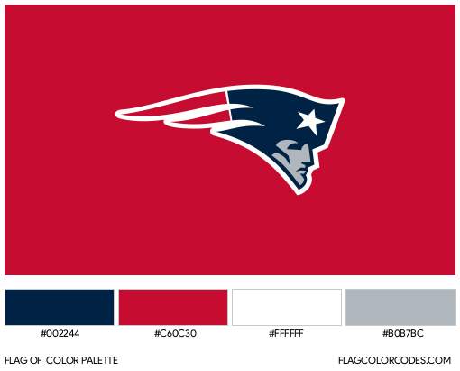 New England Patriots Flag Color Palette
