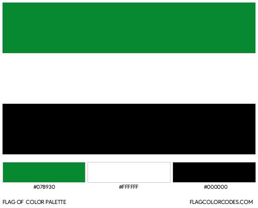 Putumayo Flag Color Palette
