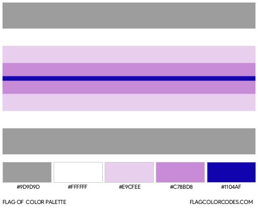 Paraboy Flag Color Palette