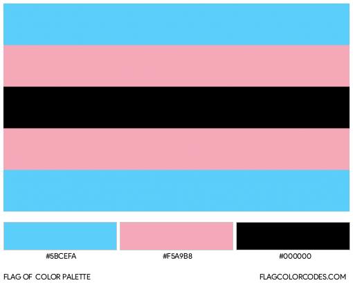Black Transgender Flag Color Palette