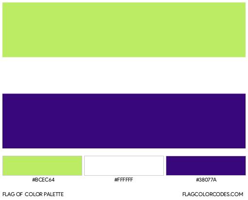 Neopronoun Flag Color Palette